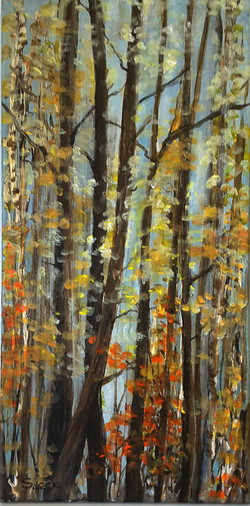 Autumn Woods - 10x20 - Oct 2017