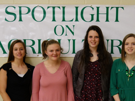 Outstanding Laurens County 4-H Senior Candidates