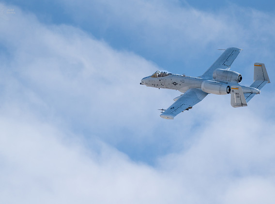 Warthog in the clouds