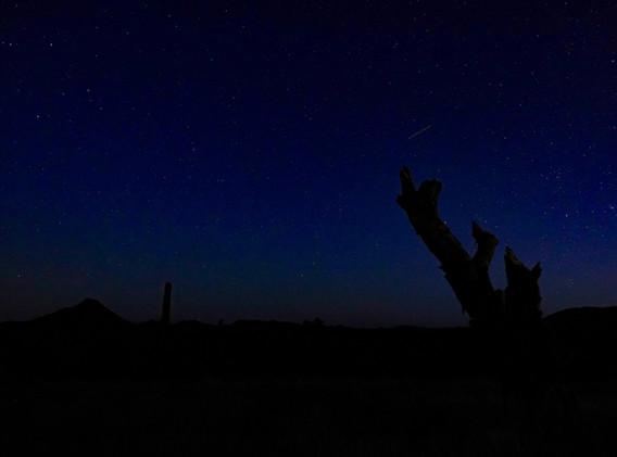 Stars and desert