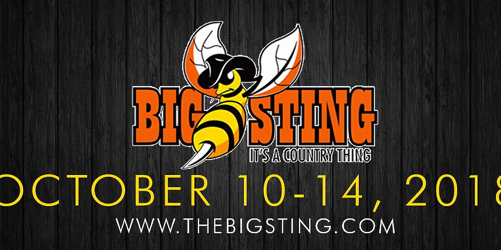 4th Annual The Big Sting - It's a Country Thing