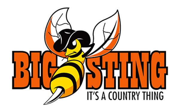 big sting.jpg