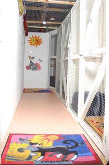 Indoor security corridor.jpg