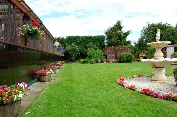 Chalets & garden.jpg