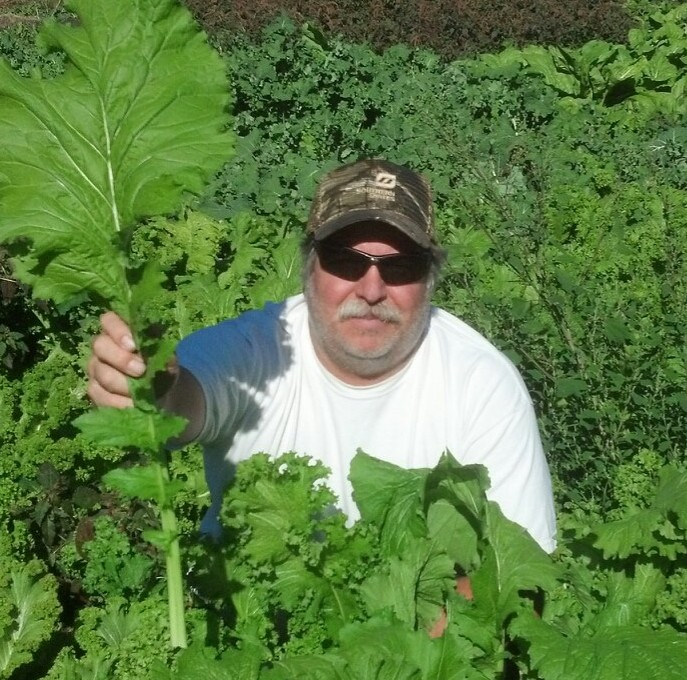 William Growing Giant Kale