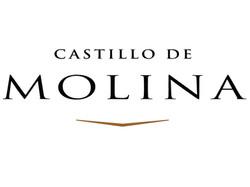 Castillo_Molina_logo