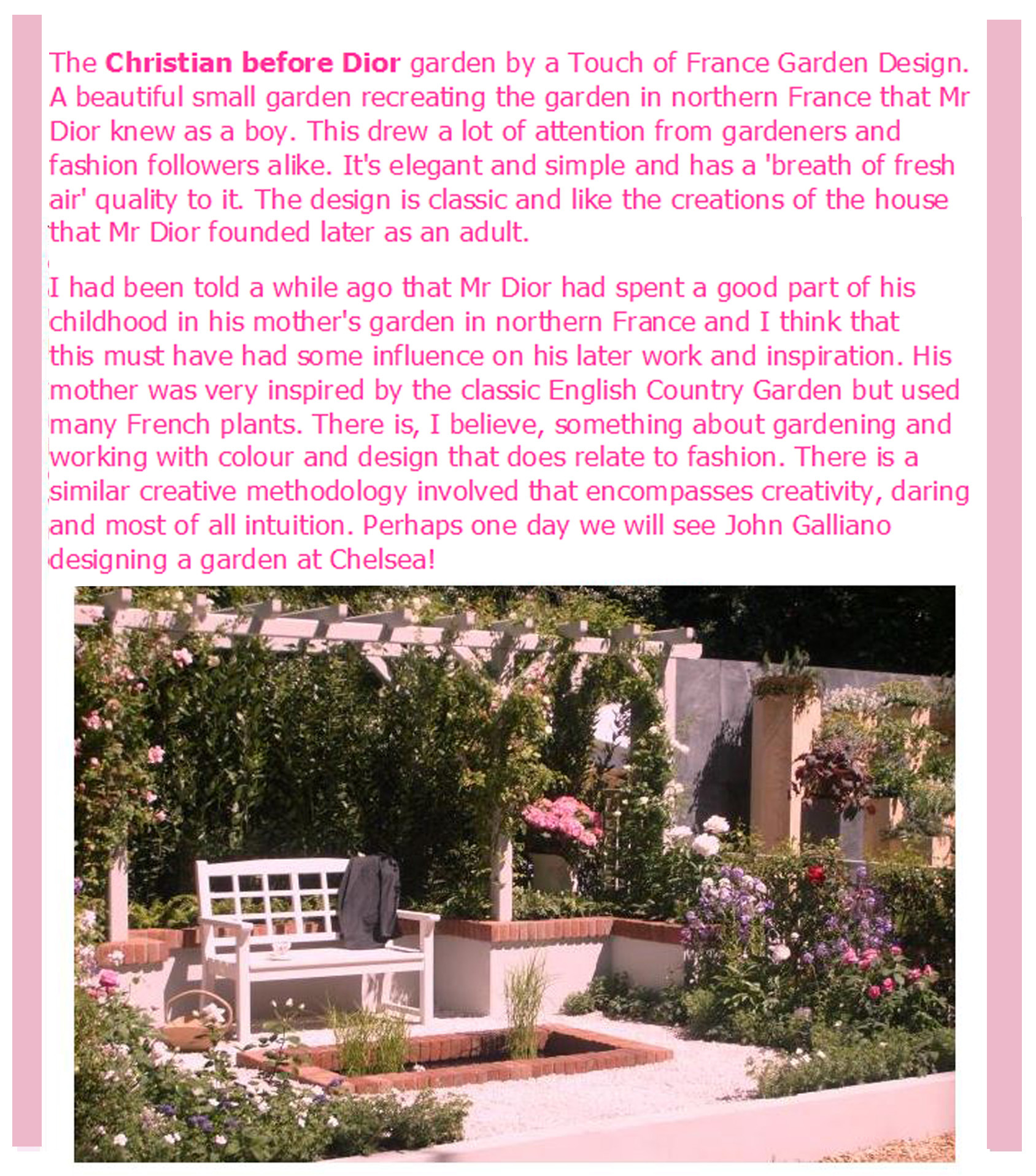 A blush of rose article