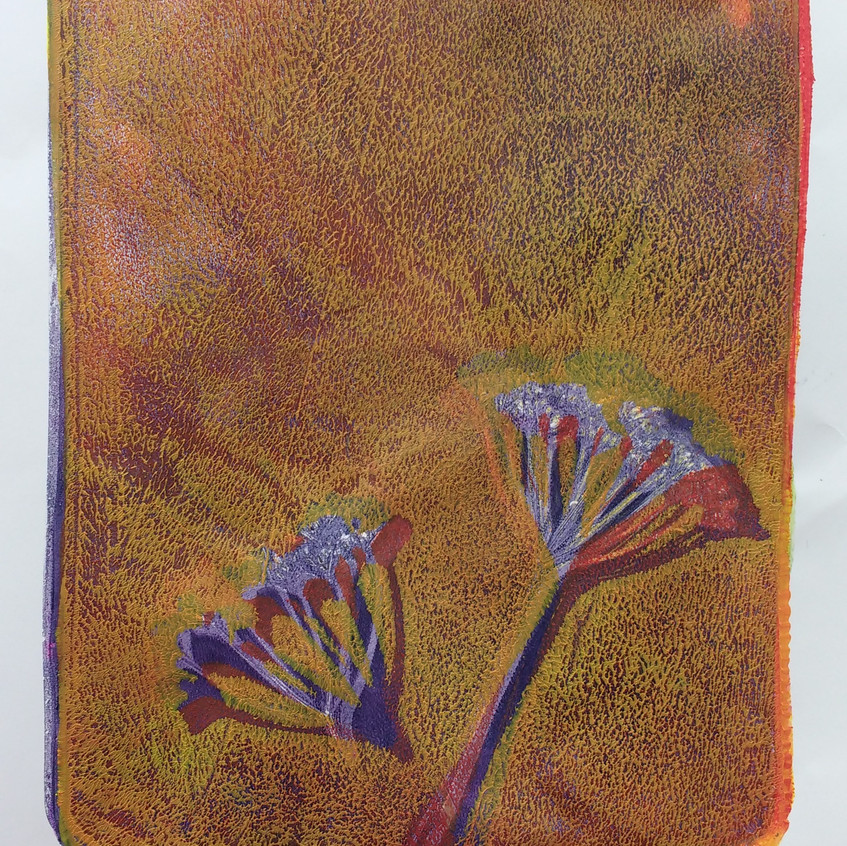 D Gelatine plate printing seed head