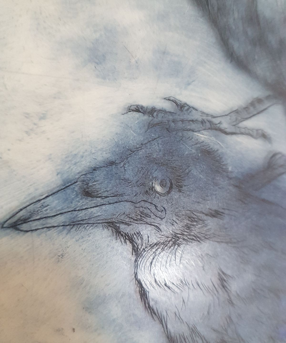 drypoint plate dubious crows