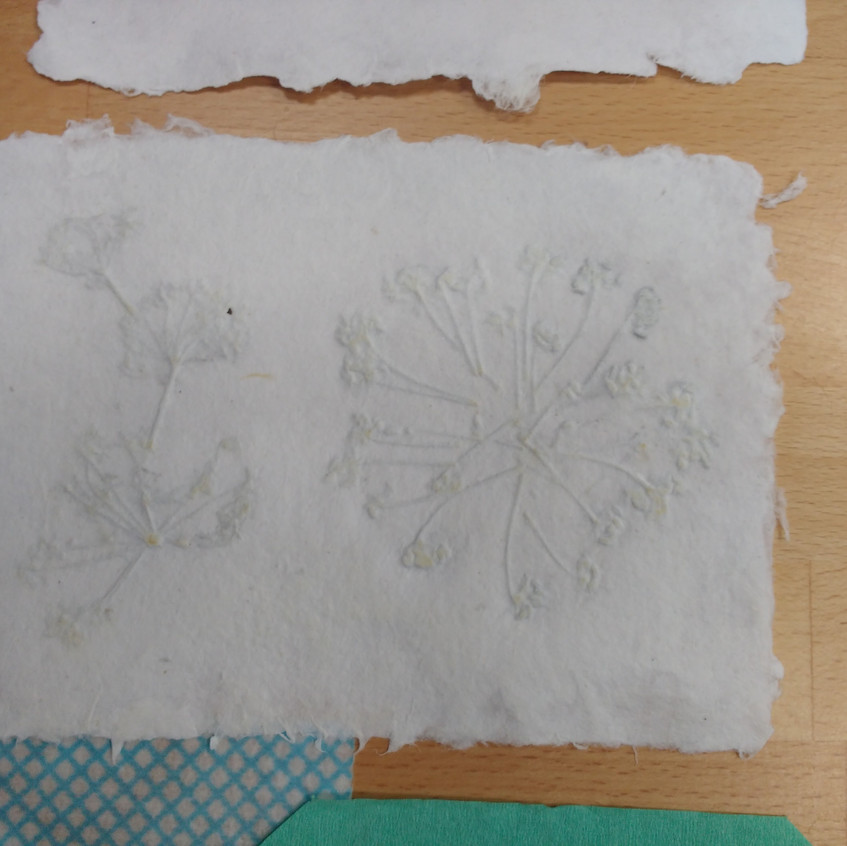 P Papermaking