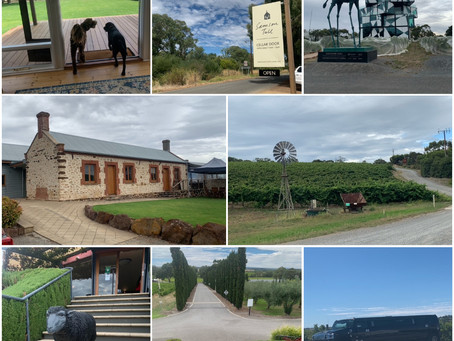 Enjoy Wineries? - Explore these and more - Just 45 Minute drive South of Adelaide