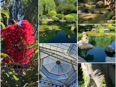 Do you enjoy the different species of flora and wildlife that you see in Gardens?