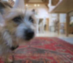 Ewan House Funitue Maisie