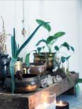 Creating Altars