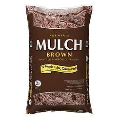 brownmuclh.jpg