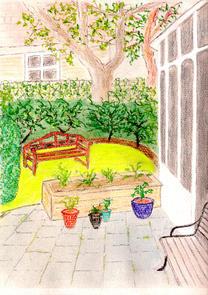 Mornington Grove Garden