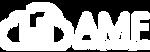 Logo Skymail AMF Branca.png