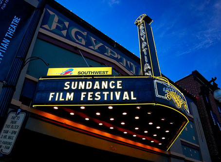 Erin a Panelist at Sundance Film Festival