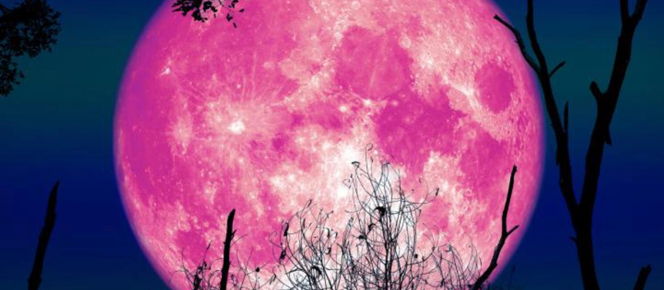 Pink & Perfect: April's Super Moon