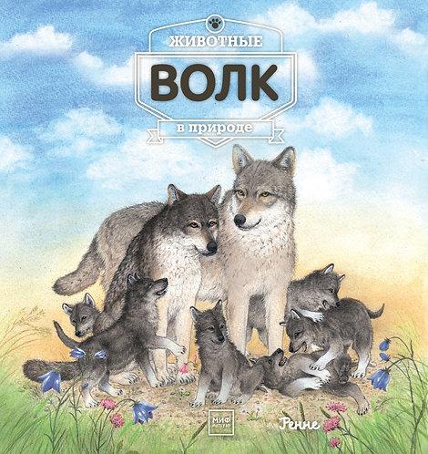 Ренне / Животные в природе. Волк