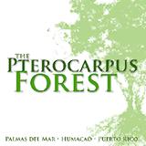 Logo Pterocarpus Forest copy.png