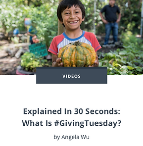 Explained In 30 Seconds What Is #GivingT