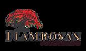 Fundación Flamboyán.png