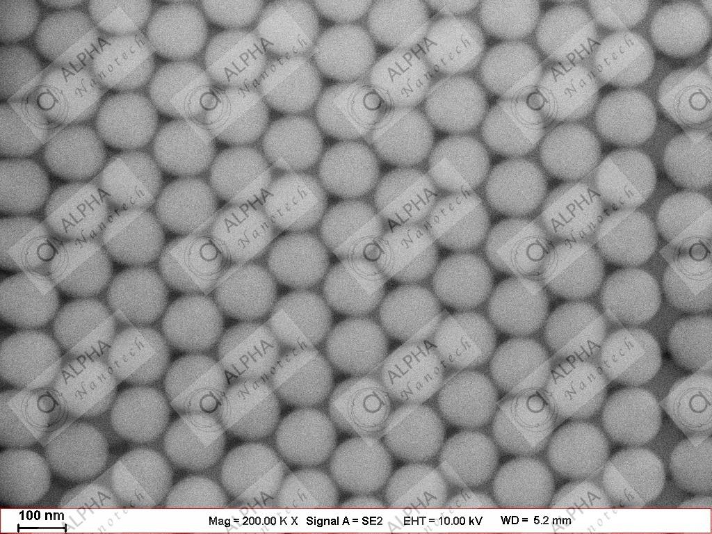 Silica Nanoparticles 120 nm