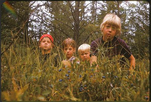 Jere Folgert picking berries 1970s