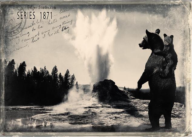 Bear Back View. Yellowstone 1871