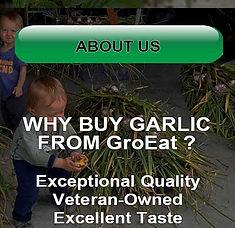 Gallatin County Montana Garlic Bozeman Belgrade Billings Missoula Kalispell Idaho Wyoming Garlic Growers Tiller Undercutter Bed Lifter Harvest Garlic