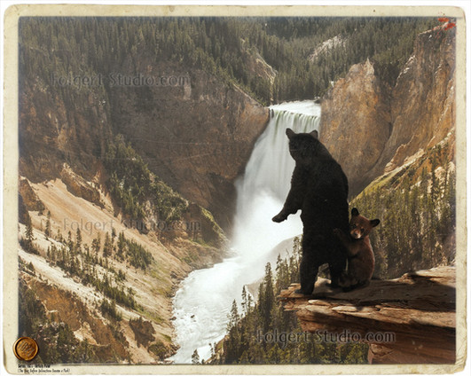 Bears at Artists Point. Yellowstone 1871