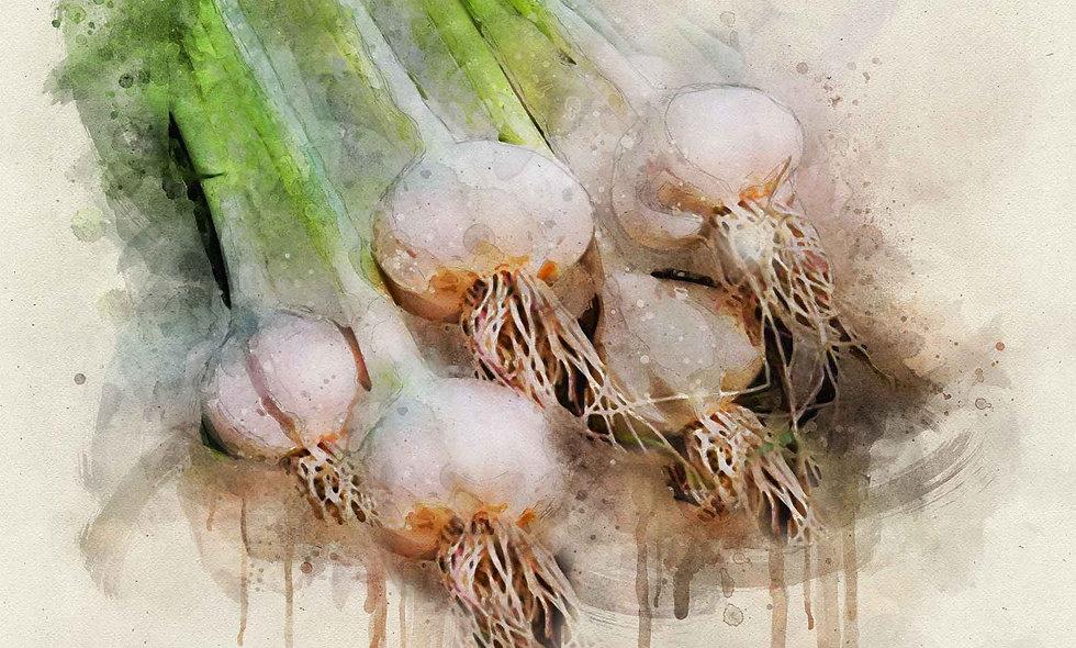 Garlic Harvest Five