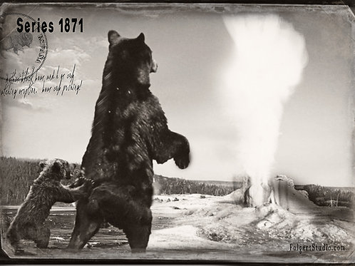 Pushy Cub.  Yellowstone 1871