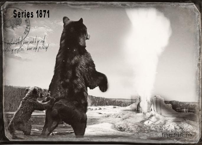 Pushy Cub. Yellowstone 1871