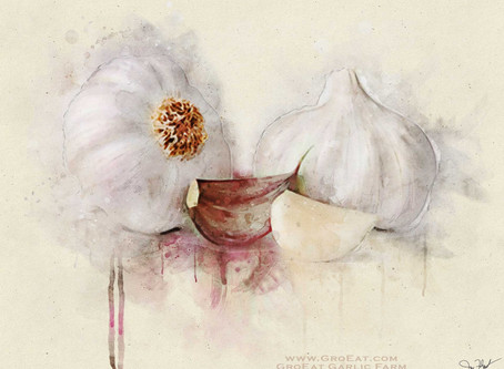Seven Ways Garlic Boosts Your Health