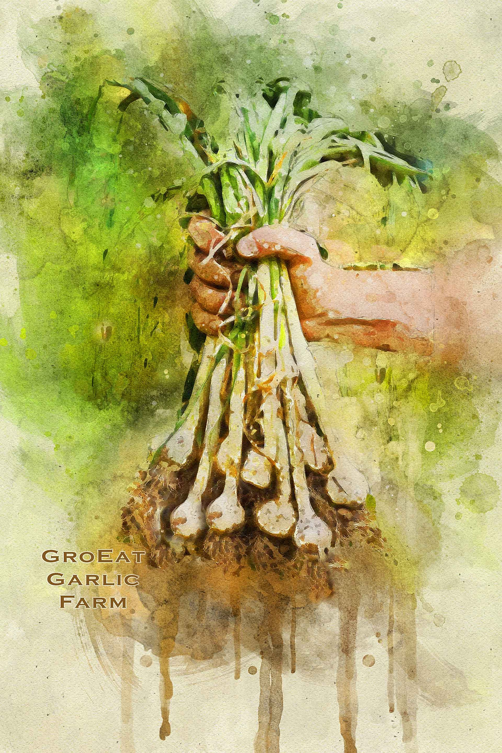 planting nsw,garlic planting nc,garlic for nail grow,garlic planting location,garlic garden lebanese breeze,garlic for garden pests,garlic for garden pest control,garlic planting perth,garlic planting philippines,garlic planting pot,garlic farming for profit,garlic plant pictures,garlic plant part,garlic plant pdf,garlic plant phoenix,garlic cloves for planting in the fall,garlic planting instructions,garlic planting in spring,garlic planting in fall,garlic planting in kenya,garlic planting in the philippines,garlic planting in south africa,garlic planting in pots,garlic planting in containers,garlic kale planting,garlic farming kenya,how to keep garlic for planting,garlic planting rotation,garlic planting requirements,garlic planting rate,garlic planting roller,garlic planting rhs,garlic plant roots,garlic garden restaurant,garlic farming requirements,garlic harvest rain,garlic cloves ready for planting,garlic for garden use,garlic bulbs for planting uk,buy garlic for planting uk,organic garlic for planting uk,garlic plant use,garlic companion planting uk,garlic harvest uk,garlic farming uk,garlic farming uganda,garlic bulbs for planting ontario,garlic planting ontario,garlic planting ohio,garlic planting out,garlic plant ornamental,garlic plant organic,garlic onion planting,garlic of planting,garlic harvest ontario,garlic farming ontario,garlic for spring planting,garlic planting for sale,garlic bulbs for planting scotland,garlic planting season,garlic planting spacing,garlic planting season south africa,garlic planting season nz,garlic planting stock,garlic planting south africa,garlic planting season in the philippines,garlic planting machine,garlic planting melbourne,garlic planting machine in india,garlic planting machine australia,garlic planting machinery,garlic planting maine,garlic planting month,garlic planting methods,garlic planting minnesota,buy garlic for planting,buy organic garlic for planting,best place to buy garlic for planting,best garlic for planting,black garlic for planting,bulk garlic for planting,buy garlic for planting australia,best way to store garlic for planting,breaking apart garlic for planting,music garlic for planting,where to buy garlic for planting near me,where to buy garlic bulbs for planting near me,bone meal for planting garlic,grow grid planting mats for onions & garlic,how to make garlic sprout for planting,garlic planting machine for sale,moon phase for planting garlic,garlic planting youtube,garlic garden yorkton,garlic farming youtube,garlic harvest youtube,garlic garden yorkton sk,garlic farming yield in india,youtube how to harvest garlic,planting garlic for next year,how to save garlic for planting next year,can you eat garlic for planting,where to get garlic bulbs for planting,preparing ground for garlic planting,gourmet garlic bulbs for planting,planting guide for garlic,planting guide for growing garlic,how to get garlic ready for planting,gardening tips for planting garlic,companion planting guide for garlic,non gmo garlic for planting,garlic bulbs for planting for sale,garlic cloves for planting for sale,where to buy garlic bulbs for fall planting,organic garlic bulbs for fall planting,where to buy garlic for fall planting,garlic sets for fall planting,fertilizer for planting garlic,elephant garlic bulbs for planting,elephant garlic cloves for planting,elephant garlic bulbs for planting uk,planting depth for elephant garlic,equipment for planting garlic,planting instructions for elephant garlic,where to buy elephant garlic for planting,crackin garlic for planting,creole garlic for planting,can you buy garlic for planting,garlic cloves for planting,companion planting for garlic,where can i buy garlic bulbs for planting,preparing garlic cloves for planting,isle of wight garlic for planting,italian garlic for planting,instructions for planting garlic,what is the best soil for planting garlic,garlic bulbs for planting ireland,how to store garlic for planting in the fall,italian garlic bulbs for planting,planting season for garlic in south africa,what is the planting season for garlic,garlic plant for zone 5,garlic planting zone 7,garlic planting zone 6,garlic planting zones,garlic planting zone 9,garlic farming zimbabwe,garlic for winter planting,garlic planting watering,garlic planting when,how to plant garlic wikihow,garlic plant when to pick,garlic plant wild,garlic plant with flowers,garlic bulbs for winter planting,garlic companion planting with tomatoes,garlic harvest when,planting depth for garlic,planting distance for garlic,how do you prepare soil for planting garlic,how do i prepare garlic cloves for planting,spacing and depth for planting garlic,directions for planting garlic,how to dry garlic for planting,how do you prepare garlic for planting,how do you break apart garlic for planting,garlic bulbs for planting australia,amazon garlic bulbs for planting,wood ash for planting garlic,how to prepare garlic for planting,how to store garlic for planting,hardneck garlic for planting,how to sprout garlic for planting,how to prep garlic for planting,how to save garlic for planting,how to choose garlic for planting,how to peel garlic