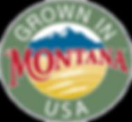 garlic seed, montana garlic, garlic recipe, cooking garlic, organic farm, grow garlic, plant garlic, hardneck varieties, bozeman organc