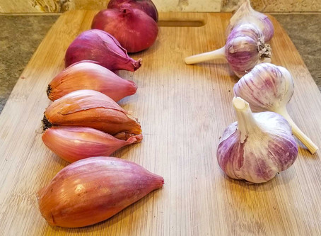 Shallots !  How Similar Are They to Onions & Garlic?