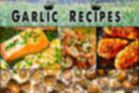garlic  garlic plant  when to harvest garlic  elephant garlic  green garlic  garlic bulb  when to plant garlic  fresh garlic  hardneck garlic  solo garlic  planting garlic cloves  garlic bulbs for planting  red garlic  spring garlic  planting garlic in spring organic buy garlic seed for planting eating food