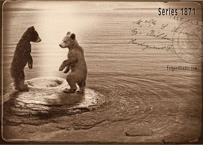 Bear Cubs at Cone. Yellowstone 1871