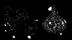 garlic farm near me, garlic farm, garlic for sale, autumn garlic planting autumn planting garlic uk best autumn planting garlic best fertilizer for planting garlic best garlic bulbs for planting best garlic for autumn planting uk best garlic for spring planting best garlic planting best place to buy garlic bulbs for planting best place to buy garlic for planting best soil for garlic planting best soil for planting garlic best time for planting garlic, biodgarlic near me, garlic for sale near me, garlic bulbs for sale, bulk garlic, buy garlic online, soaking garlic, soaking garlic before planting, where to buy garlic bulbs, french garlic bread, where to buy male garlic, where to buy female garlic,  rosewood garlic, wholesale garlic, idaho garlic growers, garden state garlic growers, garlic growing kit, fresh garlic, fresh garlic near me, elephant garlic, soaking garlic cloves, montana garlic, garlic order online, cracked garlic, how deep to plant garlic, eating garlic scapes