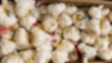 arlic for planting near me,garlic for planting for sale,garlic for planting bulk,garlic for planting canada,garlic for planting now,garlic for planting ireland,garlic for planting uk,garlic for planting,garlic for planting nz,garlic for planting australia,garlic planting bulbs,garlic planting bc,garlic planting board,garlic planting basics,garlic planting baking soda,garlic planting barrel,garlic planting by,garlic for beard grow,garlic plant belongs to the family,garlic for autumn planting,garlic planting and harvesting,garlic planting adelaide,garlic planting at home,best garlic for autumn planting uk,garlic bulbs for autumn planting,best garlic for autumn planting,garlic companion planting australia,garlic harvest and storage,garlic bulbs for planting canada,garlic planting companions,garlic planting calculator,garlic planting conditions,garlic planting calendar,garlic planting canberra,garlic planting chart,garlic planting cost,garlic plant care,garlic planting equipment,garlic pla