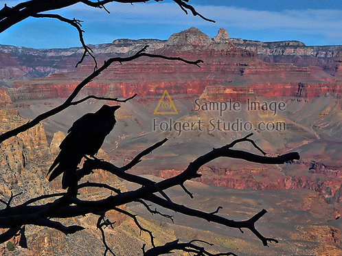Raven Canyon
