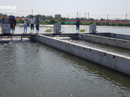 What is In-Pond Raceway System (IPRS) ?
