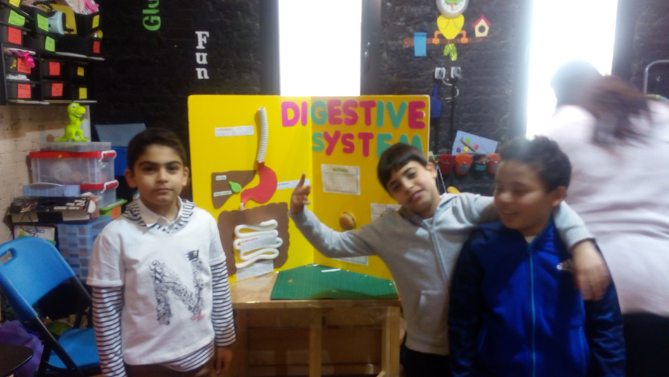 Digestive system (326)