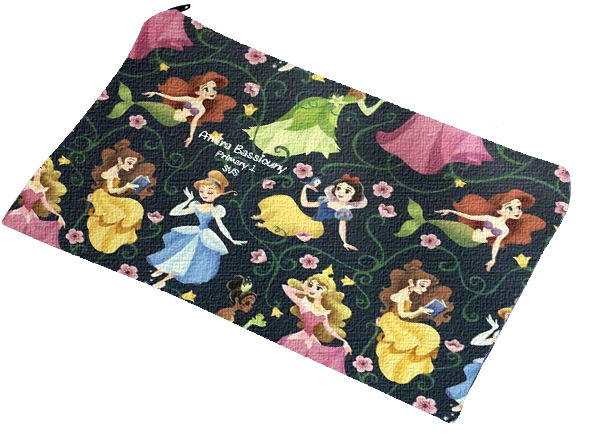 princesses pencil case