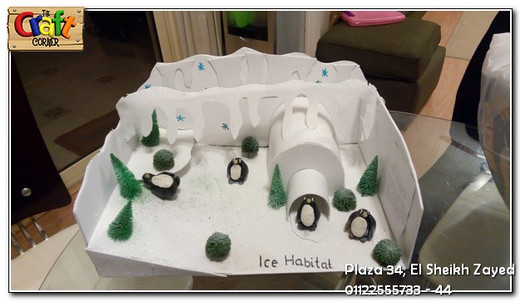Ice habitat project (1102)