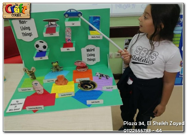 Living & Non-living things project (1169)