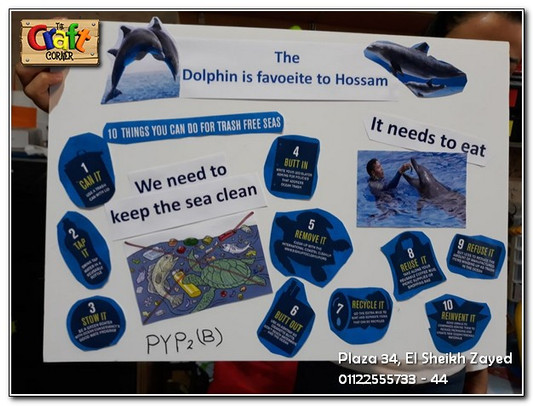 Dolphin poster (1151)